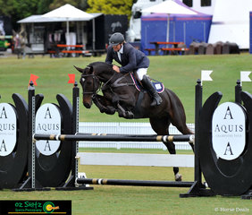 Murray Equine Ninjago tucking up over the AQUIS oxer in the 4 Year Old Final with rider, Anthony Murray in the saddle.