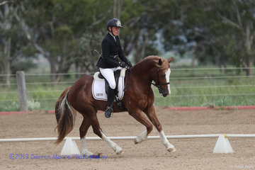Dressage - Chapel House Gwilym Ap Dafydc and Shelley Stockhouse