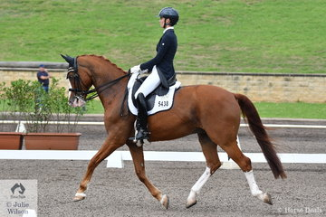 Sally Rizzuto rode Vicki Newham's, former CDI Grand Prix Freestyle Champion, Diamond Star to ninth place in the Bockmann Horse Trucks FEI Prix St Georges CDI 3*.