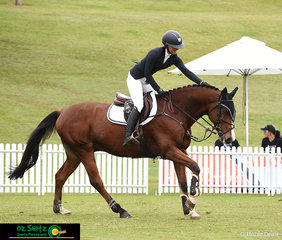 Pats all around to Jamie Priestley's horse Kolora Stud Optimus as she crossed the finish line of the Young Rider Tour Final, placing 2nd in a highly competitive field at the AQUIS Champions Tour.