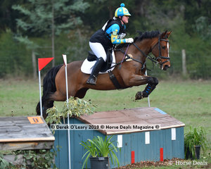 "Emma Fanning rode ""King Jester"" in the Grade 2 placing 8th representing Riddells Creek Pony Club"