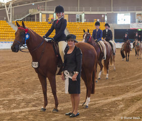 Youth Hack, HL Theodore, Charlotte Mansley