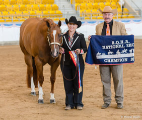 Filly / Mare Grand Champion, BM Subtlety, Samantha Daley
