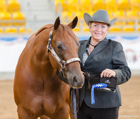 Amateur 2 to 3 yrs Filly, IM A Celebrity, Christine Sewell