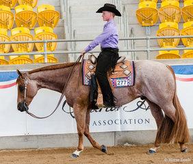 Junior Horse Western Pleasure, Somejustlike To Smooch, Matthew Freiberg