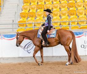 Senior Horse Western Pleasure, VS Hearbeat, Lyndall Dauth