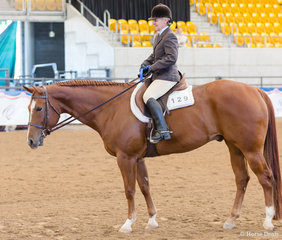 Select Amateur Hunt Seat Equitation, Triandibo Inhecagie, Gail Lowden
