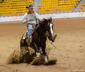 Junior Horse Reining, Tango In Hollywood, Joe Lawrence