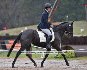 """Blackwood Spellbound"" ridden by Penelope Johnson in the EvA80 Section C"