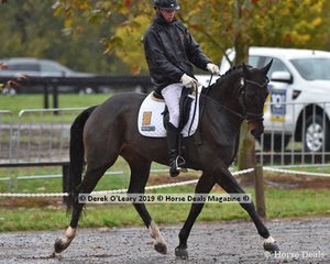 """Experienced young eventer, Sam Jeffree riding """"Wimborne Conjuror"""" in the EvA95 Section A. I'm sure we will see Sam at the Melbourne 3DE in the coming weeks"""