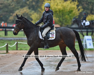 """Harry Luxmoore in the EvA95 Section B riding dad's very experienced eventer """"Bells N Whistles"""""""