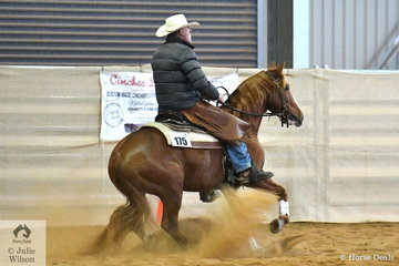 Roy Marchington rode Cuttalenas Little Rooster to win the Open Junior Horse Ranch Boxing. In Ranch Boxing the combination complete a reining pattern and then a cow is released into the arena and the rider has 50 seconds to impress the judge with his ability to work the cow at one end of the arena.