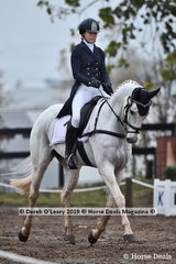 """""""Fuerst Sensation"""" in the  CCI3*-S.Dressage Phase ridden by Lily Wickenden"""