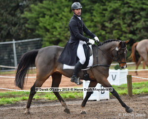 """""""Sebastian"""" in the CCI3*-S Dressage Phase ridden by Murray Lamperd"""