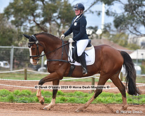 """""""Ask No More"""" ridden by Lucy Peterson in the  CCI2*-SB Dressage Phase"""
