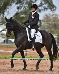"""""""Highfield Luda K1"""" ridden by David Prior in the Dressage phase of the CCI2*-SA"""