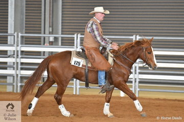 Roy Marchington rode Cuttalenas Little Rooster to win the Open Cow Horse Class. This class is the toughest event of the Ranch Horse classes. It can combine two or three phases, today two phases were judged, phase one a reining pattern followed by phase two where one cow is boxed up and then run on a pattern. So it is a bit like reining, cutting and campdrafting all in one. It is very popular with spectators.
