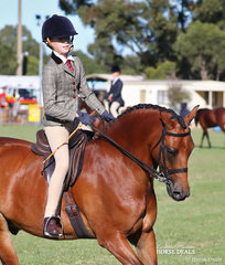 """The lovely combination of Lily Smyth and """"Winfield Lavazza"""" went Reserve Champion Small Show Hunter Galloway."""