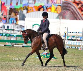 """Class winner in the pony ring """"KT Miss Molly"""", ridden by Melanie Skinner."""