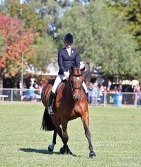 "Reserve Champion Small Hunter Hack ""Superstitious"" ridden by Kirsten Strath."