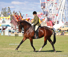 "Winner of the Adult's Ridden Show Hunter over 16hh ""EV Elusive Romance"" ridden by Dee Vodden."