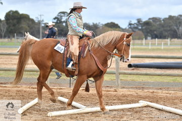 Ranch Horse classes in Australia are relatively new. A rider can compete on any breed of horse and they can compete in levels from Freshman's (beginners) through Novice, Amateur to Open events. At this event there were about 40 riders in the Freshmans division, showing the large interest in the discipline. Rachel Smith rode Aussie in the Freshmans Ranch Trail.