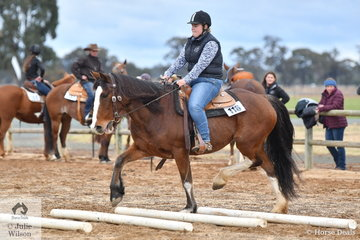Victoria Fuerst demonstrates how any breed can be good at Ranch Horse Trail as her crossbred Clydesdale, Monty happily works through the trot poles in the Freshmans Ranch Trail.