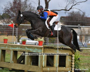 "David Prior in the CCI2*-S Div 1. riding ""HIGHFIELD LUDA K1"" placed 12th with a final score of 66.80"