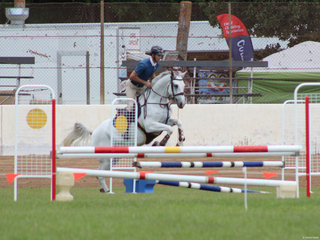 Nathan Johnson with a clear round and a win in the 1.05mtr showjumping