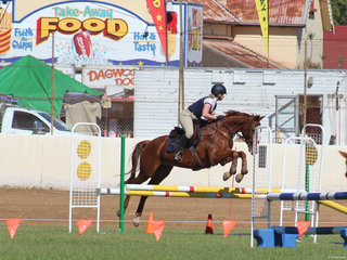 Elizabeth Boneham  had a successful day in the Show Jumping