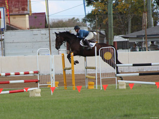 Louise Light  in the showjumping