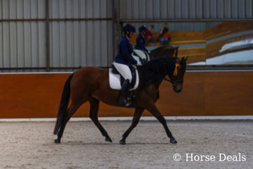 Kerri Law & Yalkin Candelita. National Champion Prepratory Dressage Horse