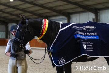 Michelle Westley & Namarye Park Sebastian. National Champion ridden Partbred