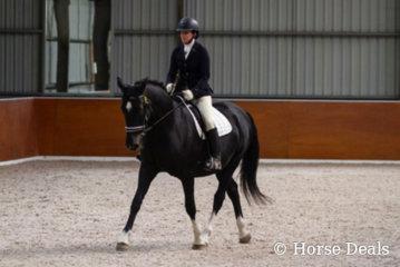 Michelle Coleiro & Namarye Park Shontava- National Champion Preliminary Dressage Horse