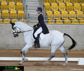 Jess Somerfield and Lakeview Albion compete in the dressage phase of the 3 Star at the Tamworth International One Day Event.