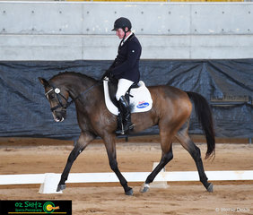 Bronze Boy R put his dancing shoes on for Heath Ryan as they compete in the dressage, the first phase of the 3 Star level at the Tamworth International One Day Event held at AELEC.