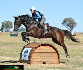First to fly over the ISHE Rolltop combination in the 2 Star Class at the Tamworth International One Day Event was Isabelle McIntyre aboard OP Rosaria.