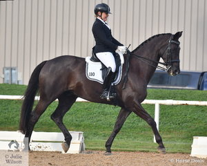 Lauren Stewart rode , 'Everton Dreamtime ' to sixth place in the Medium 4A test at the VDC Open Competition at Werribee Park.