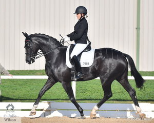 Briony Randle produced a good test aboard her Sydney Royal Lady's Hack winner, 'Santa Fe MD' to take seventh place in the Medium 4A test.
