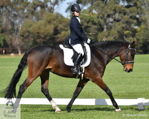 The VDC Open Cpmpetition at Werribee Park was well attended with an arena also on the grass area. Sonya Hancock took sixth place in the Participation Preliminary 1B riding her, 'Furstin Loretta'.