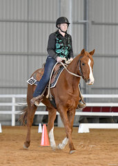 Skittles shown by Natasha Hicks in Western Horsemasnhip