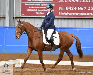 Kathleen George rode Off To Dance to take out the Novice State Championship at the Standardbred Pleasure and Performance Horse Association of Victoria, State Championship weekend at Werribee Park.
