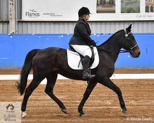 Tegan Veitch rode Exotic Success to sixth place in the SPPHAV Novice State Dressage Championship.