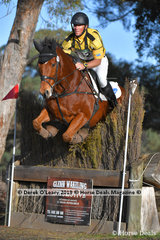 """Will Enzinger placed 2nd in the CCN1*-S Section B riding """"Innaminny"""" with a final score of 33.3"""