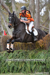 """Sam Jeffree placed 4th in the CCN3*-S riding """"Jaybee Calypso"""" with a final score of 49.0 picking up 16 penalties in showjumping and 4 time penalties points on cross country"""