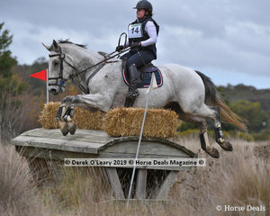 """Kate Wallis riding """".Lord Rupert"""" in the CCN3*-S"""
