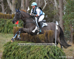 """Renekah Italilano placed 3rd in the CCN2*-S Section A riding """"Kenlock Cadillac"""" with a final score of 43.50"""
