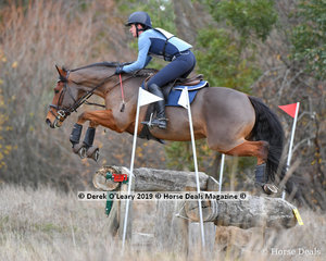 """Lucy Lolomanski placed 2nd in the CCN2*-S Section A riding """"Another Option"""" with a final score of 40.3"""
