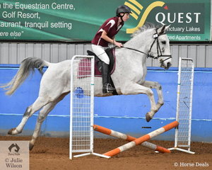 Sarah Marshall rode Starscream to third place in the Novice AM5 at the SPPHAV State Showjumping Championships.