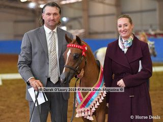 """Buttercup FF"" Champion in the Ajay Led 50% Weanling exhibited by Future Farms and pictured with Judge Jodie Van Breugel looking very glamorous on a cold Melbourne day."